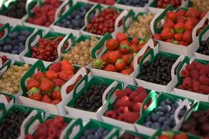 Fruit and berriesの写真素材 [FYI03766824]