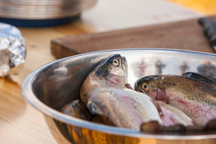 Fresh trout ready to cook, Scotlandの写真素材 [FYI03766899]
