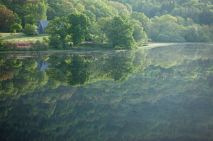 Reflection of trees in a loch, Scotlandの写真素材 [FYI03766931]