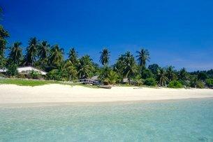 Phi Phi Islands, Phuket, Thailandの写真素材 [FYI03767228]