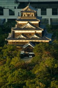 Hiroshima Castle, Hiroshima city, Western Japanの写真素材 [FYI03767249]