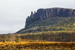 Mount Oakleigh at New Pelion on the Overland Track, Cradle Mountain Lake St. Clair National Park, paの写真素材 [FYI03767295]
