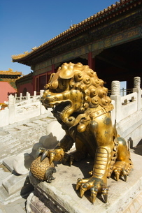 A gold lion statue, Zijin Cheng, The Forbidden City Palace Museum, Beijingの写真素材 [FYI03767379]