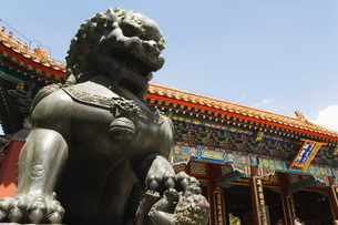 A mythical lion statue at Yihe Yuan (The Summer Palace), Beijingの写真素材 [FYI03767401]