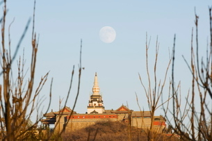 A full moon rising over a Tibetan style stupa on the grounds of Yuquan mountain, Haidian district, Bの写真素材 [FYI03767456]