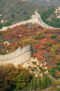 Autumn colours and a watch tower on The Great Wall of China, Badalingの写真素材 [FYI03767472]