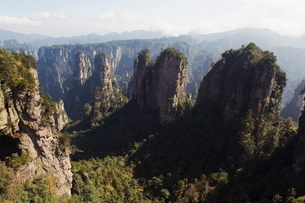 Karst limestone rock formations at Zhangjiajie Forest Park, Wulingyuan Scenic Area, Hunan Provinceの写真素材 [FYI03767515]