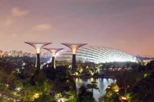 Gardens by the Bay Cloud Forest Botanic Garden, Singapore, Southeast Asiaの写真素材 [FYI03767899]