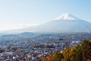 Mount Fuji, 3776m, and autumn colours, Honshu, Japanの写真素材 [FYI03767921]