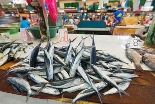 Fish for sale at the public market, Dumaguete, Cebu, The Visayas, Philippines, Southeast Asiaの写真素材 [FYI03767953]
