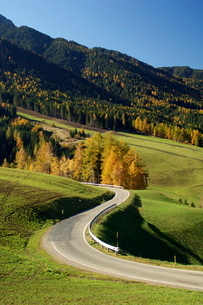 Santa Maddalena, Val di Funes, Dolomites, Bolzano province, Trentino-Alto Adigeの写真素材 [FYI03768142]