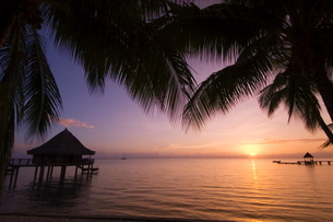 Kia Ora Resort, Rangiroa, Tuamotu Archipelago, French Polynesia Islandsの写真素材 [FYI03768237]