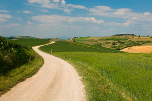 Countryside near Montepulciano, Val d'Orcia, Siena province, Tuscanyの写真素材 [FYI03768276]