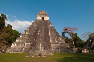Gran Plaza and Temple I, Mayan archaeological site, Tikal, Guatemalaの写真素材 [FYI03768395]