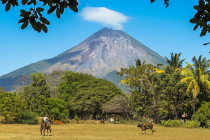 The 1610m active Volcan Concepcion, greater of two volcanoes that form popular Omotepe Island (Islaの写真素材 [FYI03768898]