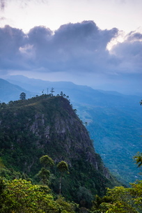 View over mountains from Haputale in the Sri Lanka Hill Country landscape at sunrise, Nuwara Eliya Dの写真素材 [FYI03769216]