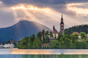 Lake Bled sunrise landscape, showing Lake Bled Church on the Island, Gorenjska Region, Sloveniaの写真素材 [FYI03769337]