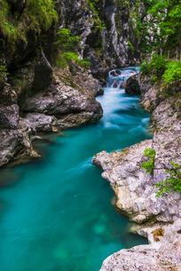 Tolminka River, Tolmin Gorges, Triglav National Park (Triglavski Narodni Park), Sloveniaの写真素材 [FYI03769379]