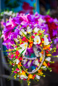 Lei (necklace of flowers) for sale at Rarotonga Saturday Market (Punanga Nui Market), Avarua Town, Cの写真素材 [FYI03769414]