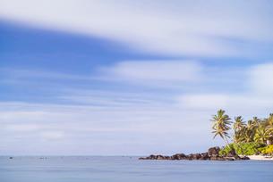 Palm tree long exposure, Muri, Rarotonga, Cook Islands, South Pacificの写真素材 [FYI03769421]