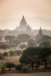 Mingalazedi Pagoda at the Temples of Bagan (Pagan) at sunsetの写真素材 [FYI03769438]