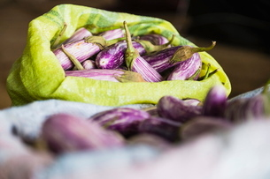 Dambulla vegetable market, purple vegetable known as Brinjal for sale, Dambulla, Central Province, Sの写真素材 [FYI03769587]
