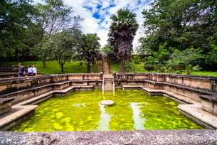 Bathing Pool (Kumara Pokuna) of Parakramabahu's Royal Palace, Polonnaruwa, Cultural Triangle, Sri Laの写真素材 [FYI03769607]