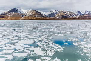 The seasons last remaining shore fast ice in Bellsund, Spitsbergen, Svalbard, Norway, Scandinaviaの写真素材 [FYI03769672]