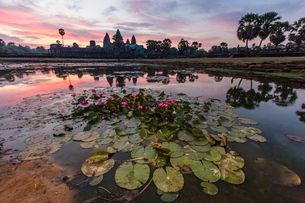 Sunrise over Angkor Wat, Angkor, Siem Reap Province, Cambodia, Indochina, Southeast Asiaの写真素材 [FYI03769798]