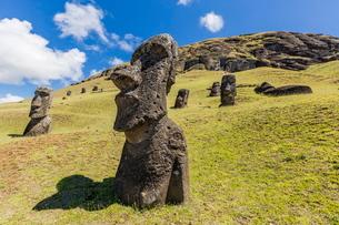 Rano Raraku, the quarry site for all moai statues on Easter Island (Isla de Pascua) (Rapa Nui)の写真素材 [FYI03769833]