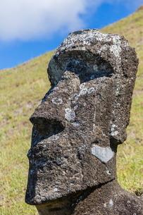 Rano Raraku, the quarry site for all moai statues on Easter Island (Isla de Pascua) (Rapa Nui)の写真素材 [FYI03769834]