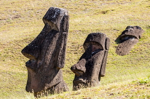 Rano Raraku, the quarry site for all moai statues on Easter Island (Isla de Pascua) (Rapa Nui)の写真素材 [FYI03769835]
