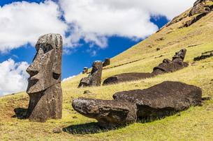 Rano Raraku, the quarry site for all moai statues on Easter Island (Isla de Pascua) (Rapa Nui)の写真素材 [FYI03769836]