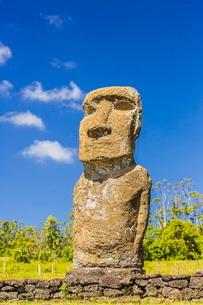 Detail of a moai at Ahu Akivi, the first restored altar on Easter Island (Isla de Pascua) (Rapa Nui)の写真素材 [FYI03769854]