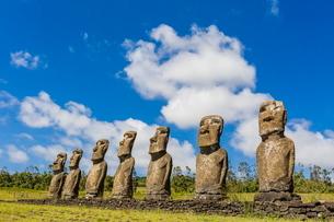 Seven Moai at Ahu Akivi, the first restored altar on Easter Island (Isla de Pascua) (Rapa Nui)の写真素材 [FYI03769860]