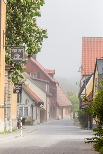 Cottages and cobblestone streets in the town of Visby, Gotland Island, Sweden, Scandinaviaの写真素材 [FYI03769935]