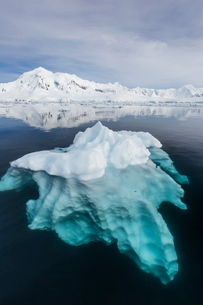 Glacial ice floating in the Neumayer Channel near Wiencke Island, Antarcticaの写真素材 [FYI03770004]