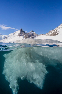 Above and below view of glacial ice in Orne Harbor, Antarcticaの写真素材 [FYI03770007]