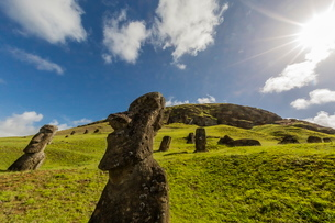 Moai sculptures in various stages of completion at Rano Raraku, the quarry site for all moai, Rapa Nの写真素材 [FYI03770073]