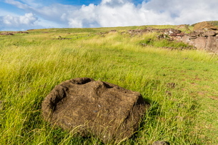 Fallen moai head at the archaeological site at Ahu Vinapu, Rapa Nui National Park, Easter Island (Isの写真素材 [FYI03770075]