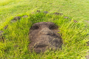 Fallen moai head at the archaeological site at Ahu Vinapu, Rapa Nui National Park, Easter Island (Isの写真素材 [FYI03770077]