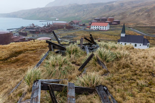 Overview of the abandoned whaling station in Grytviken Harbor, South Georgiaの写真素材 [FYI03770501]