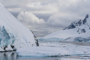 Ice floes choke the waters of the Lemaire Channel, Antarcticaの写真素材 [FYI03770511]