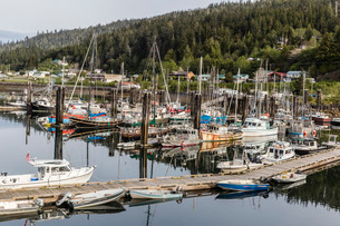 Queen Charlotte City Harbor, Bearskin Bay, Haida Gwaii (Queen Charlotte Islands)の写真素材 [FYI03770718]