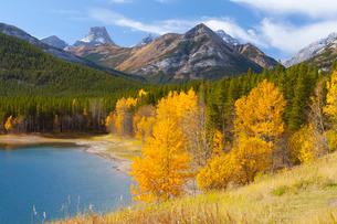 Wedge Pond in autumn, Peter Lougheed Provincial Park, Albertaの写真素材 [FYI03771070]