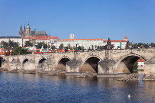 View over the River Vltava to Charles Bridge and the Castle District with St. Vitus Cathedral and Roの写真素材 [FYI03771305]