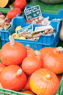 Pumpkins, onions, ginger, potatoes, garlic and lemons at a market stall, weekly market, market placeの写真素材 [FYI03771464]