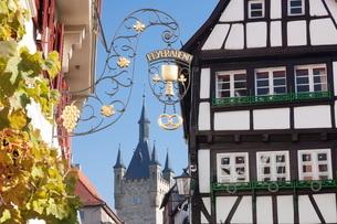 Old town with Blauer Turm Tower, Bad Wimpfen, Neckartal Valley, Baden Wurttembergの写真素材 [FYI03771543]