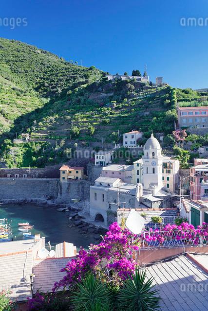 Vernazza, Cinque Terre, Rivera di Levante, Provinz La Spazia, Liguriaの写真素材 [FYI03771723]
