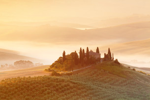 Farm house Belvedere at sunrise, near San Quirico, Val d'Orcia (Orcia Valley), Siena Province, Tuscaの写真素材 [FYI03771985]